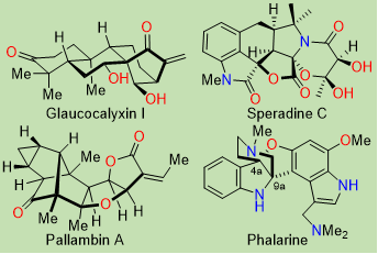 Natural products total synthesis<span></span>