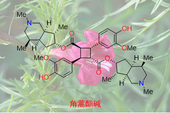 Synthetic medicinal chemistry